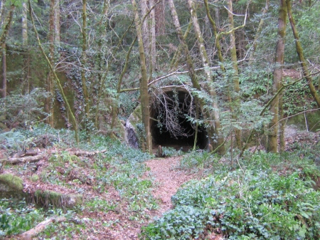 Wrights Tunnel, North End